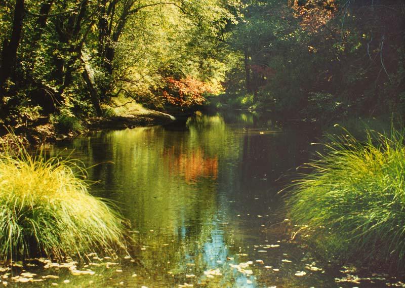 The Mattole River in Northern California